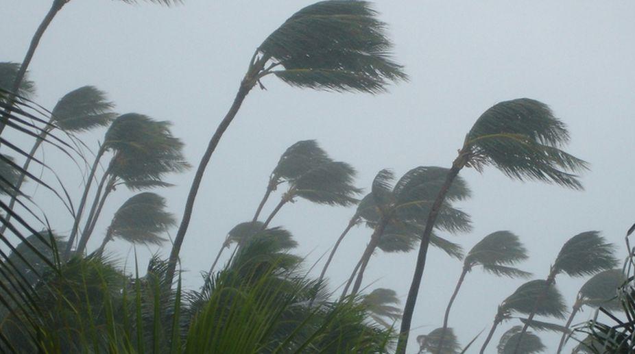 high winds, MP high winds, MP deaths