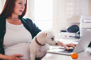 Dogs may prevent childhood eczema, asthma
