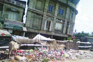 Barak Valley: Assam's appendix