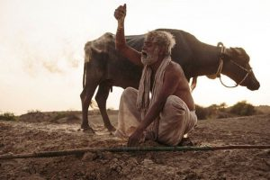 'Kadvi Hawa' not an art film: Ranvir Shorey
