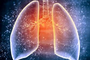 'Donor lungs over age 60 safe for transplantation'