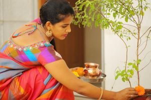 Tulsi Vivah marks the end of Kartik month 2017