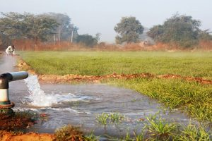 Irrigation scam: Punjab VB conduct searches