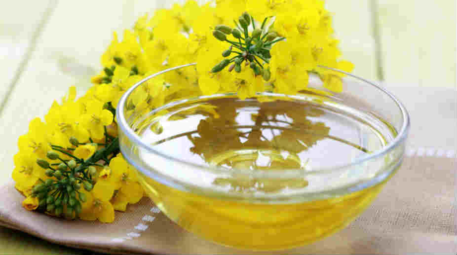 Industrial oils, Castor seeds, Castor Oil, Vashi Oils, Demand