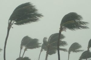 29 killed as cyclone Ava hits Madagascar
