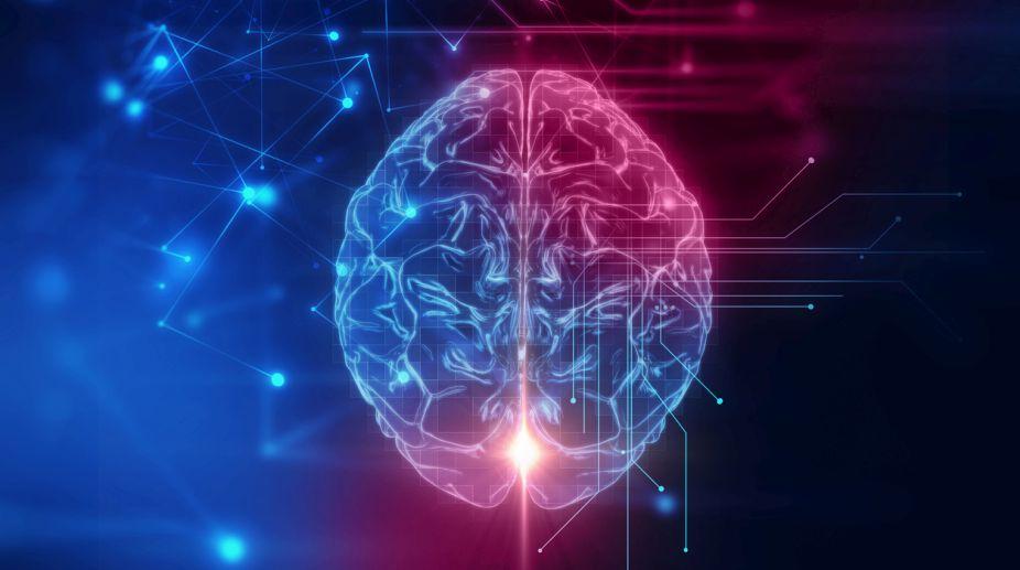 Brain, Voice, Scientists, Germany