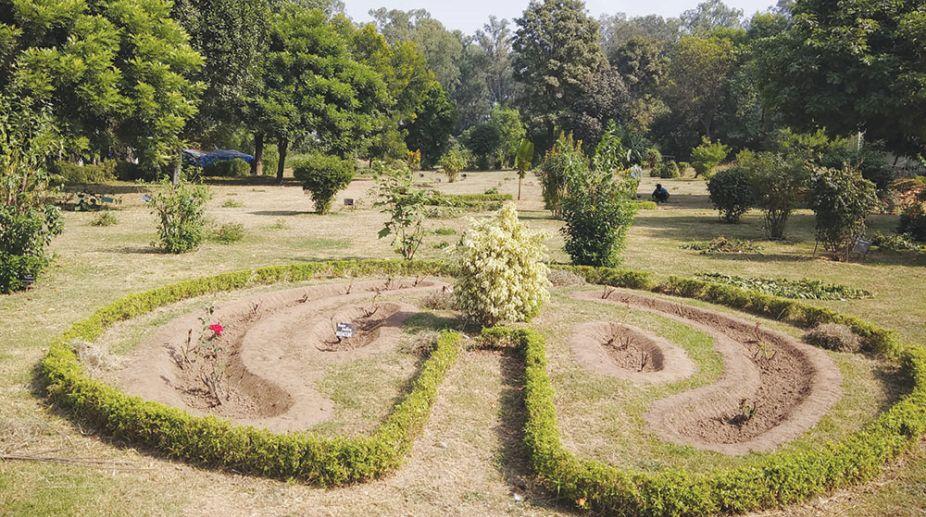 JU Botanical Garden