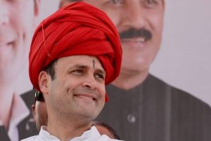 It is an honour to work for Congress and country: Rahul Gandhi