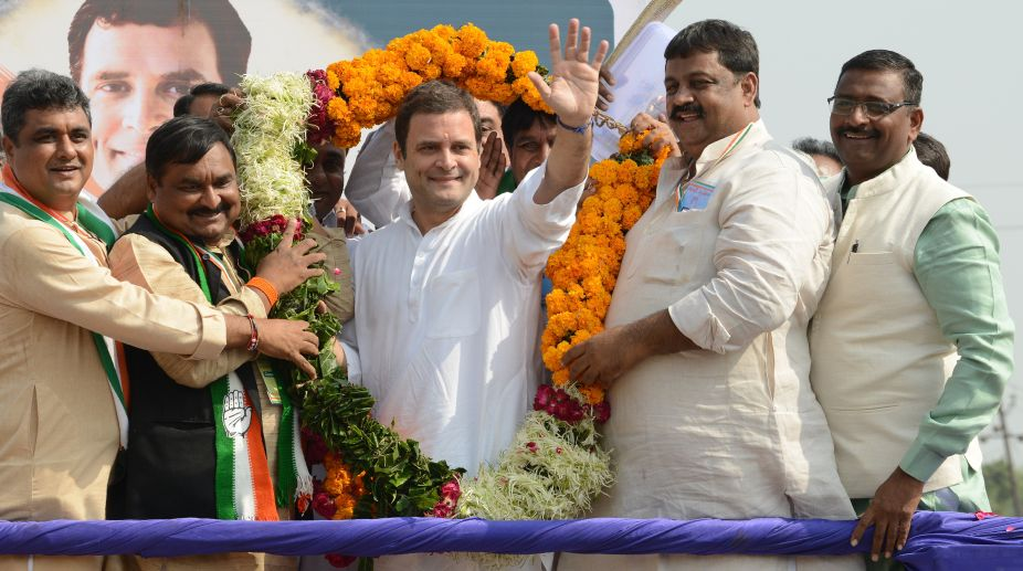 Rahul Gandhi, Congress President, MP by-poll