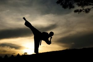 Korean martial art 'hapkido' takes baby steps in India