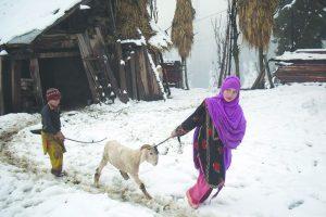 Snow season shrinking in Shimla
