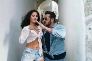 Salman Khan fans celebrate the release of Tiger Zinda Hai