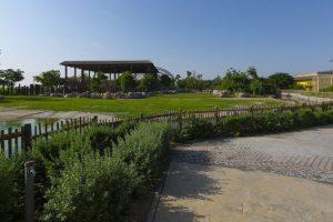 Dubai Safari draws 14,000 visitors in first two days