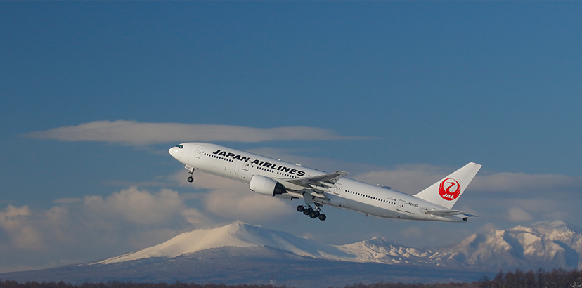 Japan Airlines, Email Fraud, Fraudulent Accounts, Investigations