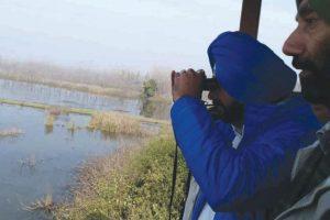 Migratory birds festival kicks off at Keshopur Chhamb