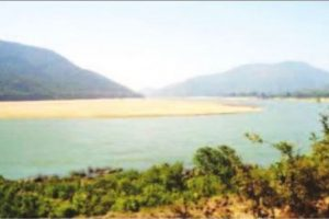 Forest minister plans Green Mahanadion 50,000 acres
