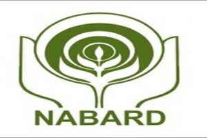 NABARD projects `2754.65-crore credit for M'bhanj
