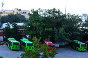 Delhi govt invites bid for 1,000 buses under Cluster scheme