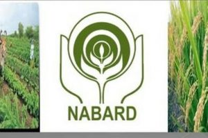 Punjab receives `8,000 cr from NABARD