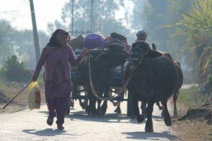 Border hamlets deserted as over 40K people escape Pak shelling