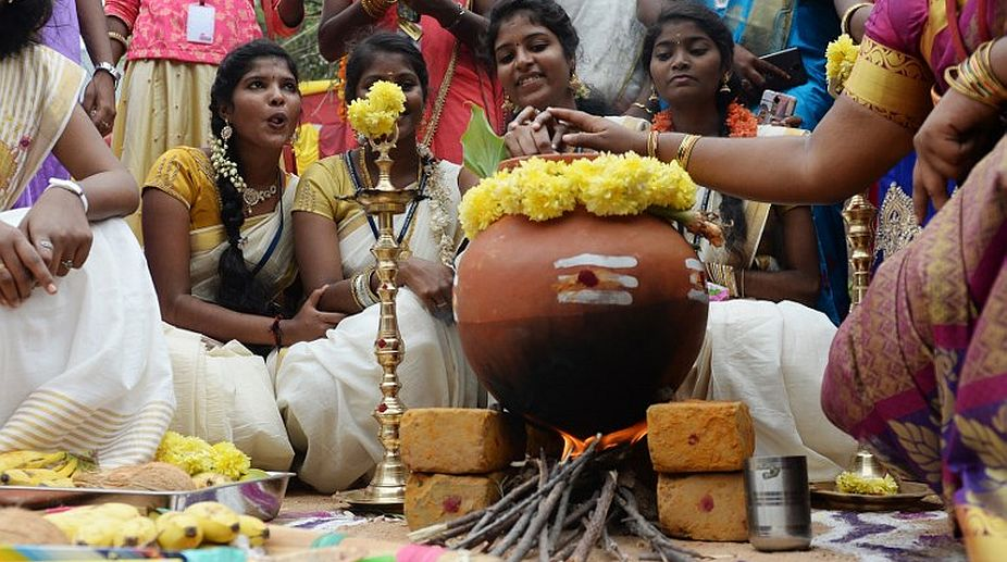 Tamil Nadu celebrates Pongal with traditional fervour