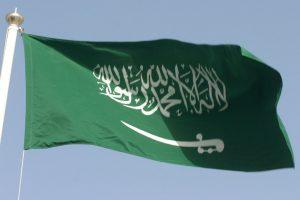 Saudi elites released after 'corruption settlements'
