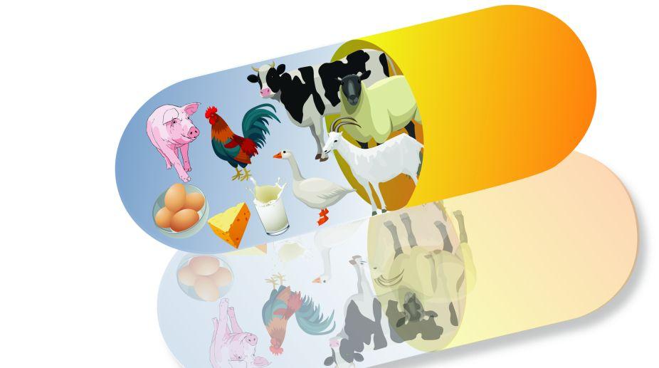 micronutrients, vitamins, Animals