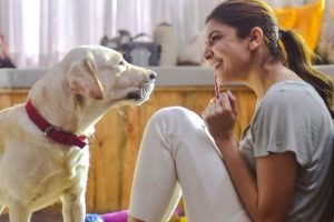 Have a look at Anushka Sharma's day off with her pet 'Dude'