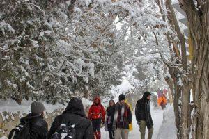 North Iran gets massive snow dump