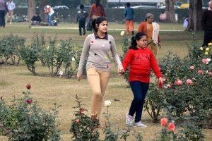 Chandigarh Rose festival all set to begin on Thursday