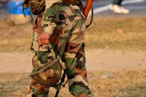 Hike in allocation for defence minimal: Panel