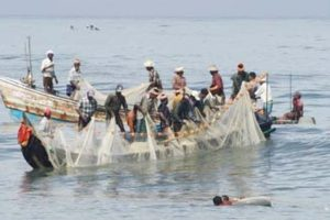 40 sea-going fishermen held over illegal activities