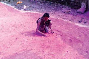 Record herbal 'abir' produced as Holi nears