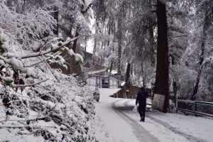 Snowfall, rain bring down mercury in HP