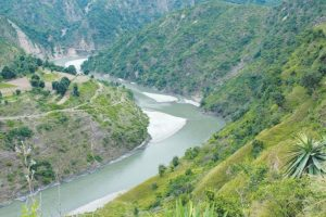 Dam to destroy forests in Himachal, Uttarakhand