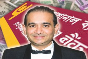 PNB fraud: ED arrests close associate of Nirav Modi