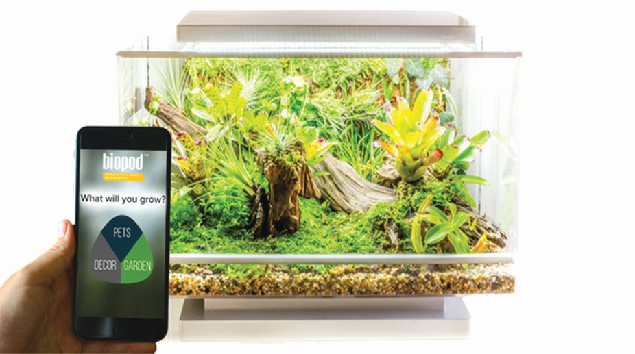 green, jungle, biopod app, Vision Aqua