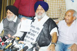 Amarinder govt taking credit for Badal govt's works: SAD