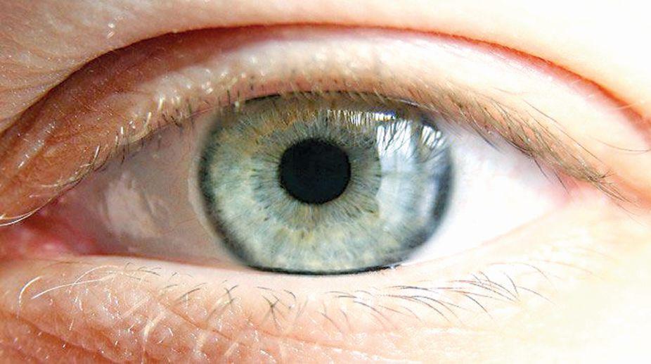 retina, Nano-wires, disease, nerve cells