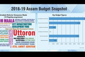 Assam government's first e-budget: Here's what Himanta Biswa Sarma said and proposed