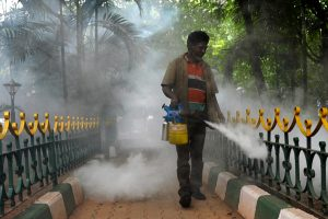 10 cases of dengue in Delhi, one in March: report
