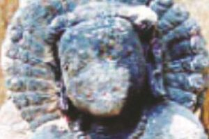 Remains of pre-historic era discovered in foothills of Devangiri in Balasore