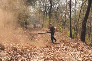 Precautionary measures initiated to check forest fires, villagers alerted