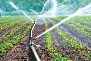 The micro-irrigation challenge