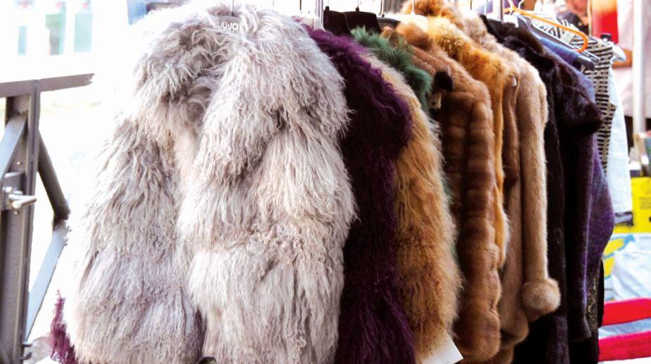 fashion, Jain, HSUS, animal Skin, Faux fur.