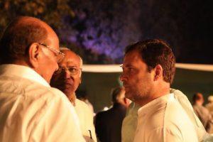 Rahul Gandhi meets Sharad Pawar after BJP's defeat in bypolls