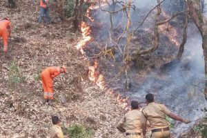 U'khand to recruit more for tackling fires