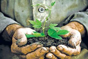For an organic world