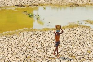 Punjab's villages facing problem due to sullage water