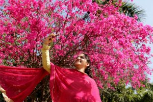 In pics: Bloom boom in Chandigarh!